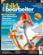 der bildbearbeiter 04/2012